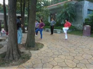 Taichi in the park.